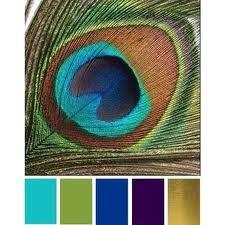 peacock wedding ideas - Google Search