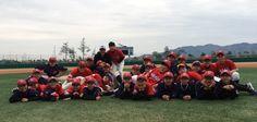 화순중학교, 야구부 전남중학야구 최강팀으로 등극