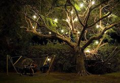 Magical Tree - jewels, so we can see the band in the tree Tree Lighting, Outdoor Lighting, Backyard Lighting, Lighting Ideas, Backyard Hammock, Hammocks, Backyard Retreat, Magical Tree, Romantic Evening