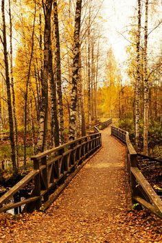 Autumn Bridge, Finland photo via becca