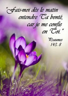 PSAUME 143,8 French Qoutes, All Eyez On Me, Quote Citation, Prayer Board, Reading Passages, Quotes About God, Names Of Jesus, Jesus Loves, True Words