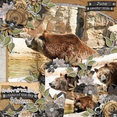 I used Documented pieces by Wendy Tunison Designs, Capture Memories pieces by Queen Wild Scraps and Templatopia Vol.6 by Ponytails Designs