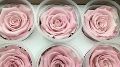Preserving roses: 3 simple methods and practical tips- Rosen konservieren: 3 einfache Methoden und praktische Tipps Preserve roses Instructions Tips - Diy Resin Crafts, Crafts To Sell, Decor Crafts, Easy Crafts, Cardboard Crafts, Kids Crafts, Paper Crafts, Resin Flowers, Dried Flowers