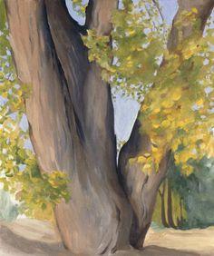 Georgia O'Keefe  Untitled (Cottonwood Tree), 1945. Oil on board.