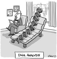 example of cartoon DNA Biology Jokes, Chemistry Jokes, Biology Lessons, Ap Biology, Science Puns, Science Comics, Science Cartoons, Science Art, Life Science