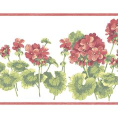 Norwall KC78355 Kitchen Concepts Wallpaper Border Red White Green