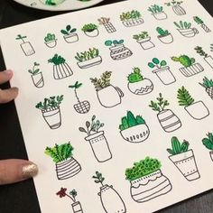 Succulent doodles