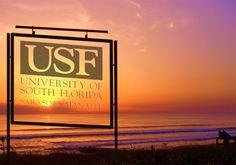 USF Ad I made