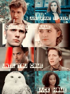 Tonks and Fred and Hedwig from Harry Potter Cinna and Prim and Finick from The Hunger Games Gus from fault In Our Stars Divergent Hunger Games, Hunger Games Fandom, Harry Potter Fandom, Divergent Quotes, Tfios, Percy Jackson, Fandoms Unite, Saga, I Love Books