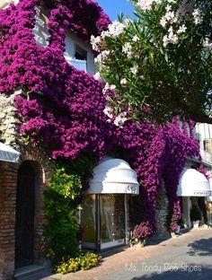 Capri, Italy: A Travel Journal   Ms. Toody Goo Shoes #Italy