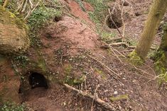 Stunning 700-year-old giant cave used by Knights Templar found behind a rabbit hole in the British countryside - http://www.mirror.co.uk/news/uk-news/gallery/stunning-700-year-old-giant-9981913