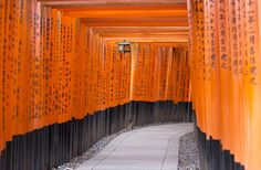 Japan tours, holidays & vacations | Inside Japan Tours