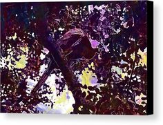 Peacock Bird Tree Feather Canvas Print / Canvas Art by PixBreak Art Peacock Bird, Bird Tree, Abstract Canvas, Great Artists, Amethyst, Feather, Greeting Cards, Tapestry, Texture