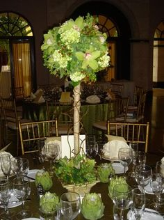 Orchid and hydrangea topiary Topiary Centerpieces, Centerpiece Wedding, Table Decorations, Topiary Trees, Topiaries, Topiary Wedding, Garlands, Hydrangea, Floral Wedding