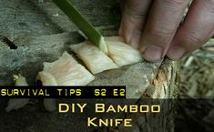Video tutorial -- DIY Bamboo Knife sharp enough to cut up a small animal. #survivaltips