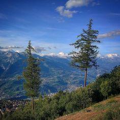 Almost twins... #hiking #suisse #switzerland #swissmountains #alpes #montagnes #valaiswallis #nendazisbeautiful #inlovewithnendaz #suisse #igersuisse