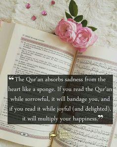 Remainders, Allah