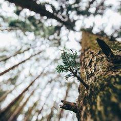 Urban Landscape Photography Tips – PhotoTakes Creative Photography, Amazing Photography, Photography Poses, Landscape Photography, Nature Photography, Travel Photography, Digital Photography, Photography Classes, Photography Lighting