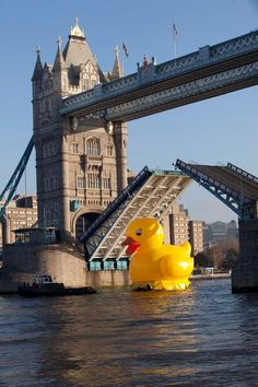 Giant Thames Rubber Duck at Tower Bridge