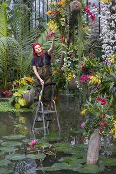 El Blog de La Tabla: Orquídeas 2014 en Kew Gardens. Cazadores de plantas