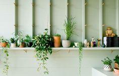 Going Green — The Design Files   Australia's most popular design blog.