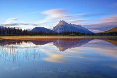 Wings of Nature - Vermilion Lake  Banff National Park
