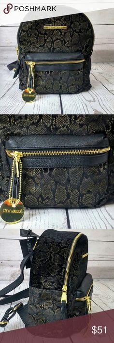NWT Steve Madden Back Pack. Beautiful Black & Gold Steve Madden small backpack NWT. 8.5Wx 10.25L ×4D Steve Madden Bags Backpacks
