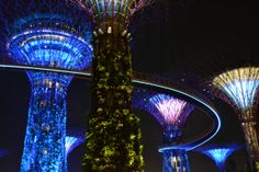 Avatar Gardens by the Bay Singapore