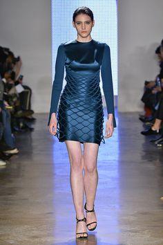 Iris van Herpen Spring 2015 Ready-to-Wear Fashion Show