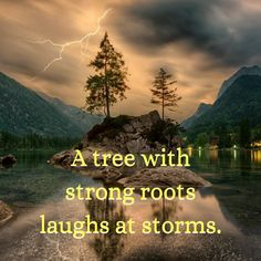 A tree with strong roots laughs at storms Say Something Nice, Bob Marley, Live For Yourself, Psalms, Catholic, Roots, Dreaming Of You, It Hurts, Life Quotes