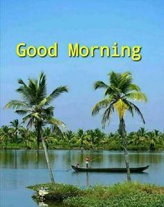 Good Morning Sunrise, Good Morning Happy, Good Morning Messages, Good Morning Greetings, Good Morning Wishes, Beautiful Morning Quotes, Good Morning Beautiful Flowers, Good Morning Quotes, Photos Of Good Night