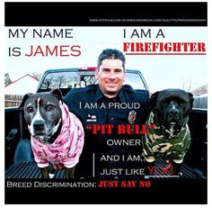 Firefighters love Pit bulls.
