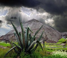 Pyramid of the Sun, Teotihuacan. Been there, climbed that. It's huge