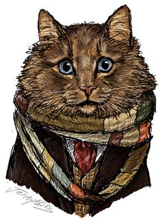4d0b5acc 14 Best Doctor Who - Cats images | Brazil, Doctor Who, Gatos