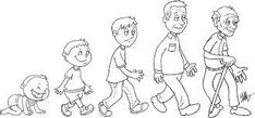 Tall and short Preschool Themes, Preschool Worksheets, Classroom Activities, Human Life Cycle, Cycle For Kids, Creative Curriculum, Mini Canvas Art, Teaching Aids, Human Development