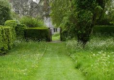 Journal - Arne Maynard Garden Design