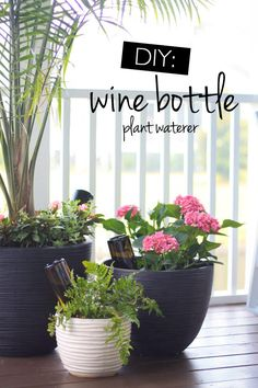 Diy wine bottle waterer - an easy way to keep your plants hydrated via Our Fifth House