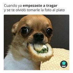 Tomar fotos a la comida  #RecetasGratis #FrasesDivertidas #Expresiones #Refranes #Meme #Quotes #FrasessobreComida #FrasedelDía #SabíasQué #HumorenEspañol #MemesEspañol #MemesDivertidos