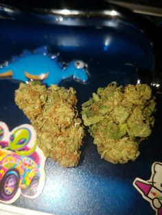 lyssamooo:  Pineapple Express    Marijuana News