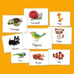 Recursos para el aula: Animales domésticos