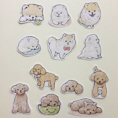 Good Rilakkuma Anime Adorable Dog - fde6ef4ad3589f5b42314a1c5da615c8--to-try-tattoo-ideas  Picture_782482  .jpg