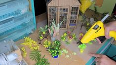Greenhouse Plants, Miniature, The Creator, Miniatures
