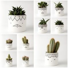 Suculentas Diy, Painted Plant Pots, Painted Flower Pots, Pottery Painting Designs, Fleurs Diy, Cactus Pot, Decoration Plante, Cement Pots, Cement Crafts