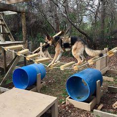 dog agility course diy how to build ; dog agility course diy how to make ; Dog Training Equipment, Agility Training For Dogs, Dog Agility, Training Your Dog, Agility Course For Dogs, Dog Playground, Playground Ideas, Playground Design, Plastic Playground