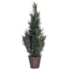 Vickerman AZTDX4230 Cedar Green Artificial Plant, 3-Feet *** You can get more details by clicking on the image. (This is an affiliate link) #DIYHomeDecor