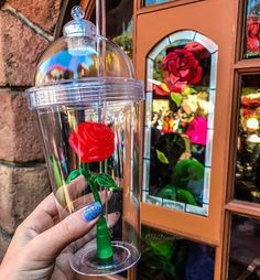 """6 Secrets This Guy Who Played Goofy Wants You To Know About Disney World These """"Beauty and the Beast"""" Cups Are Creating Massive Lines At Disneyland – Enchanted Rose Cups Souvenirs Disney Dumbo, Walt Disney, Disney Love, Disney Magic, Disney Parks, Disney Pixar, Disney Stuff, Disney Characters, Starbucks Logo"""