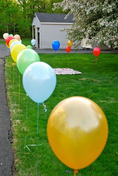 Super cute way to define the picnic area, get red balloons, or red and white polkadot.  Golf tees to stick in yard.