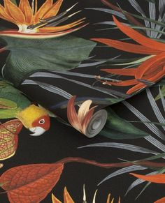 Want to make a statement? Try our Superfresco Easy Parrot Black Wallpaper to create a tropical feel that lasts all year round! 🌿 - #jungledecor #junglehome #junglehouse #jungledesign #tropicalhouse #tropicalhome #tropicaldecor Parrot Wallpaper, Tropical Wallpaper, Diy Wallpaper, Animal Wallpaper, Matte Black Background, Black Background Wallpaper, Feature Wallpaper, Black Backgrounds, Paradise Flowers