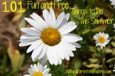 101 Fun and Free (or Cheap) Things to Do This Summer >> Natural Parents Network #summer #play #parenting