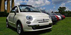 Fiat500 at the park
